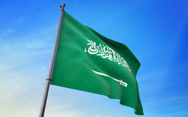 Saudi Arabia Freight Forwarding and Logistics - Crane