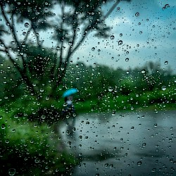 Read article: Monsoon Season - India & Subcontinent - ALERT August 5th