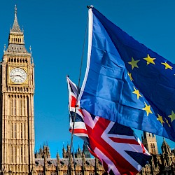 Read article: Will Brexit go ahead on January 31, 2020?